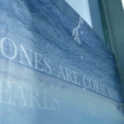 """Bones are coral made, Pearls are eyes"" at SHIBAURA HOUSE"